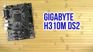 Распаковка Gigabyte H310M DS2