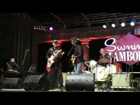James Burton last guitarist of Elvis Presley on stage of summer Jamboree 2010 @ 2 ( live )