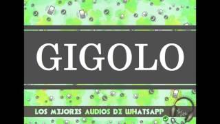 GIGOLO - Los Mejores Audios De WhatsApp