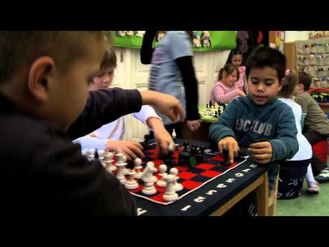 Judit Polgar's CHESS PALACE Program for the Future of Education (extended version)