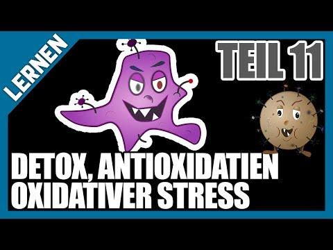 LERNEN #11 - Antioxidantien, freie Radikale, oxidativer Stress, Glutathion