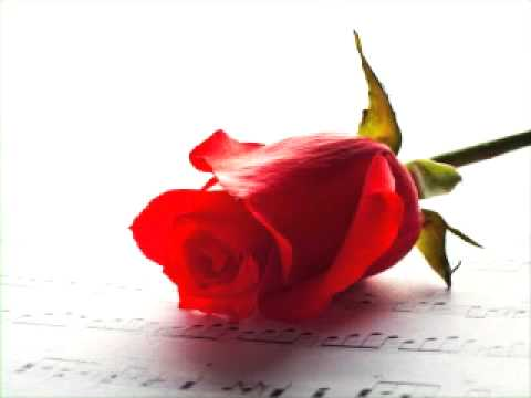Awesome hindi bollywood songs 2014 hits melodious music slow...