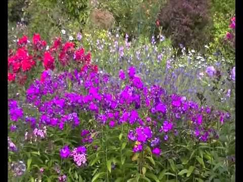 Greenbank Garden - Flowers, Butterflies and Fountain