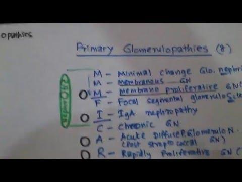Renal Pathology - NEPHROTIC VS NEPHRITIC  (1ry Glomerulopathies ) thumbnail