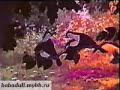 chxikvta qorcili 2-2