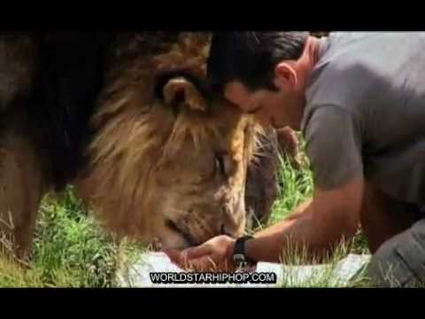 Kevin Richardson - Dangerous Companions Music Videos