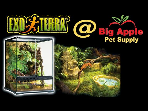 Exo Terra Glass Terrariums - Showing All Sizes Live At Global Pet Show