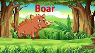 Bé tập nói tiếng anh qua con vật - dạy em học đọc qua các loài động vật