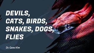 DEVILS, Cats, Birds, Snakes, Dogs, Flies | Dr. Gene Kim