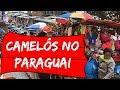 Camelôs no Paraguai 2017: O que vale a pena comprar?
