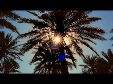 Oasis  - Abu Dhabi Tourism Authority brand ad 7