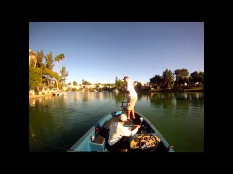 Urban Fishing in Arizona!