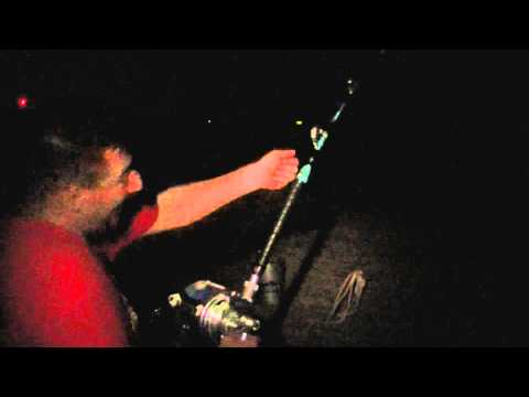 North Carolina Shark Fishing BIG Lemon and Tiger