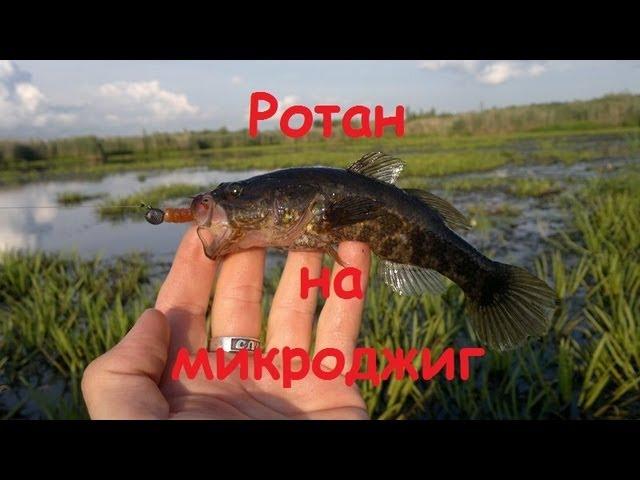 видео ловля на микроджиг 2016