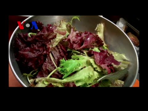Food for the Inner City (VOA On Assignment May 17)