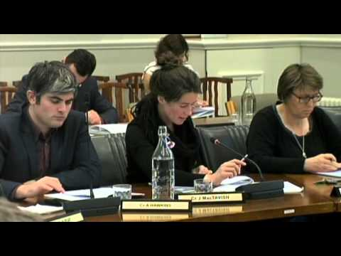 Dunedin City Council - Finance Committee - March 29 2016