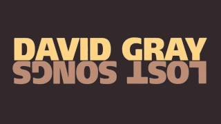 Watch David Gray Falling Down The Mountainside video