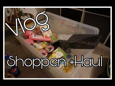 VLOG   Ab zu IKEA   Rossmann Haul    Reborn Baby Deutsch
