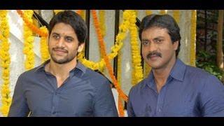 Tadakha - Sunil: Highest collections in my career for Tadakha   Tadaka Telugu Movie Success Meet l Comedy