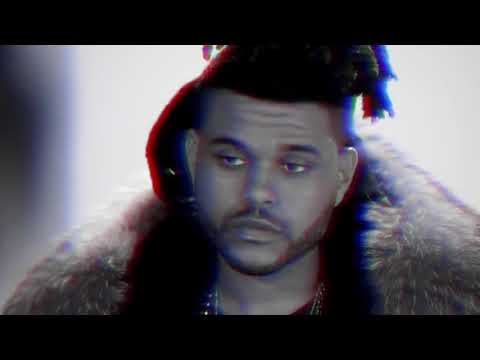 The Weeknd - In Vein ft. Rick Ross (Music Video)