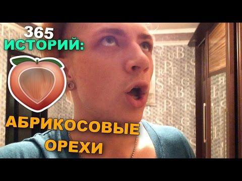 365 Историй: Абрикосовые орехи / Андрей Мартыненко