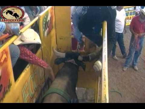 ¡¡Guerra de Titanes!! Seleccion Michoacana vs Guerreros Implacables de Joel de Chaucingo.