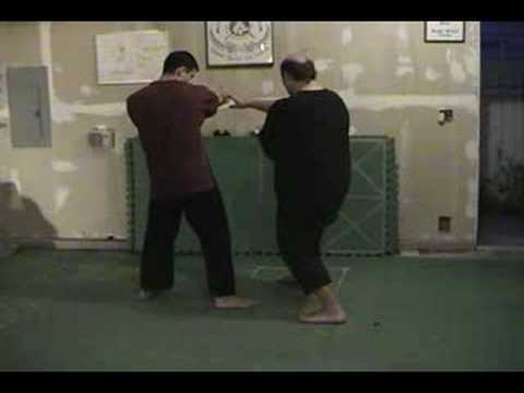 Pencak Silat Badan Dasar (Body Basics) Image 1