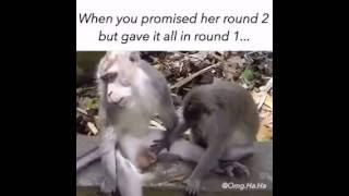 ketika lu berjanji sama pacar lu untuk round ke 2 , tapi lu sudah memberikan nya semua di round 1