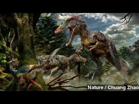 'Pinocchio Rex,' Cousin Of T-Rex, Discovered In China