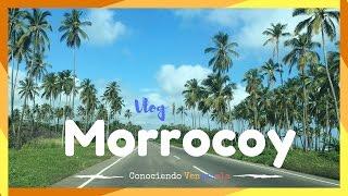 download lagu Un Paseo En Lancha + Baño De Playa En gratis