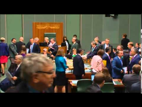 Shorten on edge of seat.  What did he say to Tony Abbott?