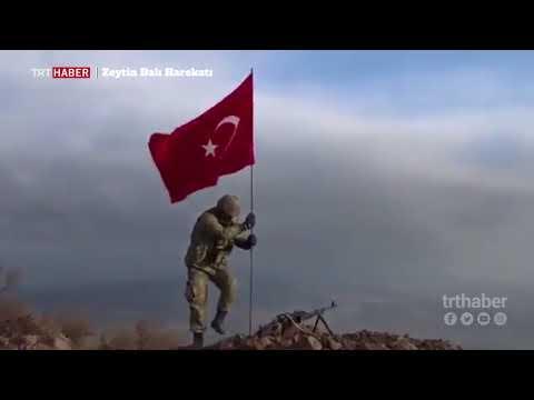 Mehmetçik Darmık Dağı'nı teröristlerden temizledi.