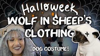 Wolf in Sheep's Clothing Dog Costume -DIY- ✧Halloweek 2018✧