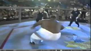 sumo wrestler got knocked out!