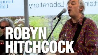 Watch Robyn Hitchcock Saturday Groovers video