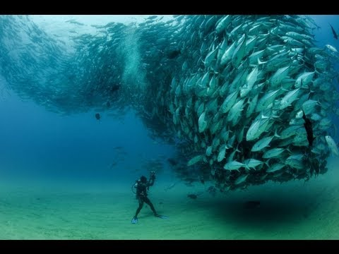 World's most amazing photos (Part 22) - Blow your Mind