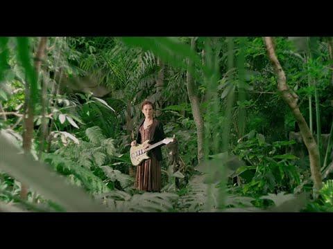 Claire Diterzi - Le Roi Des Forêts