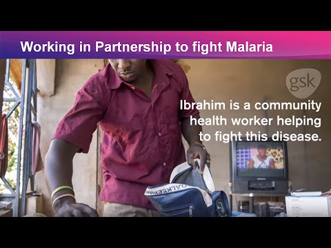 Fighting malaria on all fronts