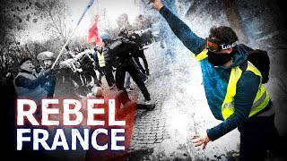 Discovering the truth behind France's anti-Macron 'yellow vest' protests