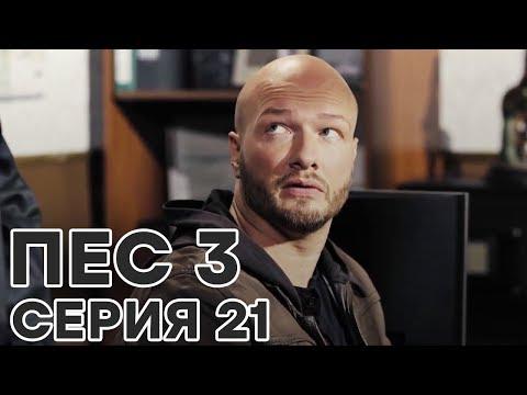 Сериал ПЕС - все серии - 3 сезон - 21 серия - смотреть онлайн