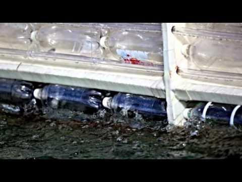 Plastiki Sets Sail | California Academy of Sciences