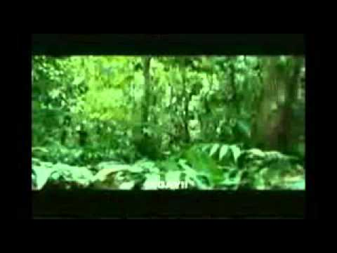 Apocalypto Movie Trailer2.wmv video
