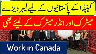 Canada Work Visa for Less Educated People.
