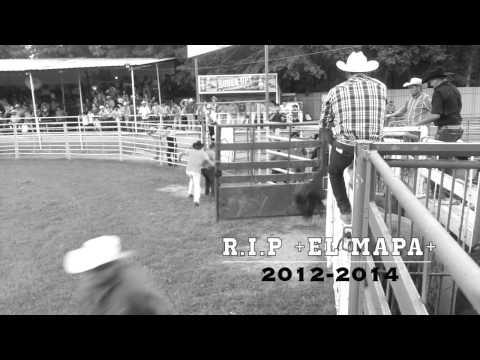 descanse-en-paz-el-mapa-de-los-toros-venenosos-de-rancho-el-alacran-.html