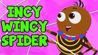 Incy Wincy araña   araña canciones   canciones infantiles   Itsy Bitsy Spider