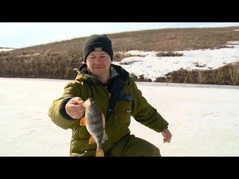 рыбалка свежие выпуски
