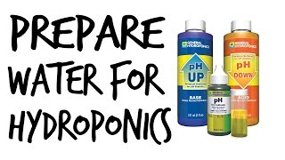 How to Prepare Water for Hydroponics