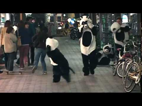 JACKASS NIGHT PANDAS