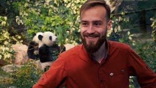 Download Lagu Пора Валить - Песня про панду Gratis STAFABAND