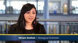 Experiential Learning | UM-Dearborn 2014